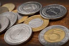 Dwa złoty moneta Obraz Stock