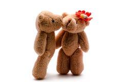 Dwa zabawkarskiego niedźwiedzia Obrazy Stock