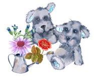 Dwa zabawkarskiego psa i kwiat w podlewanie puszce pojedynczy białe tło Fotografia Stock