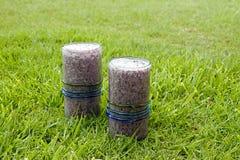 Dwa zdrowego napoju, czarnych jagod smoothies z kokosowym mlekiem słuzyć na trawie Obrazy Royalty Free