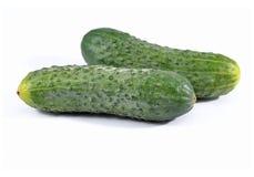 Dwa zielonego ogórka Zdjęcia Stock