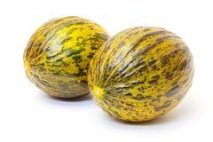Dwa Zielony melon Fotografia Royalty Free