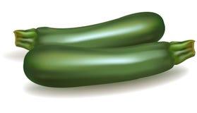 dwa zucchini Obraz Royalty Free