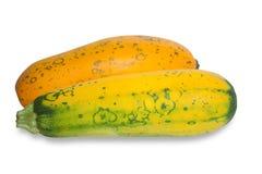 Dwa zucchini Zdjęcie Royalty Free