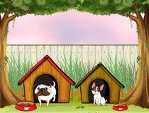 Dwa zwierząt domowych inside ogrodzenie z drewnianymi domami ilustracja wektor