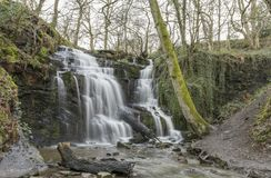 Dwaasheid Dolly Waterfall in Meltham, West-Yorkshire, Engeland royalty-vrije stock fotografie