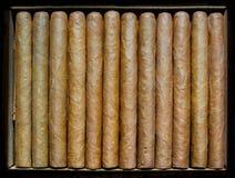 Dwanaście cygar Fotografia Royalty Free