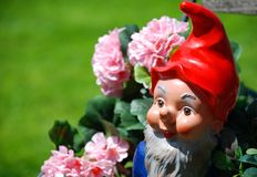 Dwarf Royalty Free Stock Images