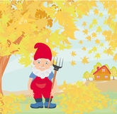 Dwarf autumn Stock Photography