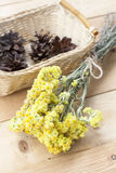 Dwarf everlast flowers bouquet and pine cones in a wicker basket on light wooden table Royalty Free Stock Images