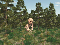 Dwarf in a forest Royalty Free Stock Images