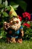 Dwarf Stock Photos