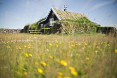 Dwarf's house. Traditional turf covered house in Iceland Royalty Free Stock Photo