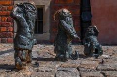 Dwarf Slepak Gluchak Wskers Wroclaw Stock Images