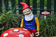Dwarf and toadstool Stock Image