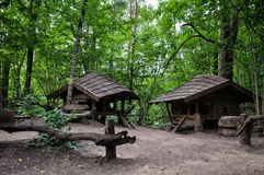 Dwarfs fairy дома в загадочных древесинах Стоковые Изображения RF