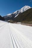 Dwars het ski?en van het land spoor Royalty-vrije Stock Foto