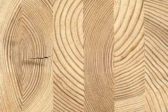 Dwarsdoorsnede van gelijmd houten hout van pijnboom stock afbeeldingen