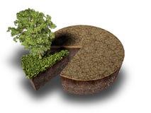 Dwarsdoorsnede van grond met gras Stock Afbeelding
