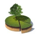 Dwarsdoorsnede van grond met gras en boom Stock Foto's