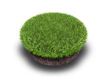 Dwarsdoorsnede van grond met gras op wit Royalty-vrije Stock Afbeelding
