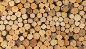 Dwarsdoorsnede van het hout royalty-vrije stock afbeeldingen