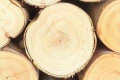 Dwarsdoorsnede van het hout, brandhoutstapel royalty-vrije stock afbeelding