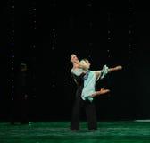 Dwarsholding en roteren-flamingo de dans-de werelddans van Oostenrijk Stock Afbeelding