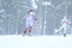 Dwarsland die in Na Morave ski?en van Nove Mesto Stock Fotografie