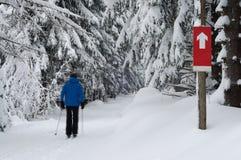 Dwarsland Ski Runner - Motieonduidelijk beeld Royalty-vrije Stock Foto