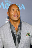 Dwayne Johnson Royalty Free Stock Images