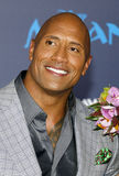 Dwayne Johnson Stock Photography