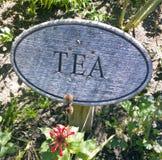 dwie herbaty Zdjęcia Royalty Free