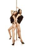dwie seksowne dziewczyny Zdjęcie Royalty Free