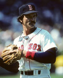 Dwight Evans Royalty Free Stock Images