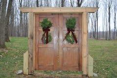 Dwoiści drzwi w drewnach Obraz Royalty Free