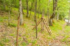 Dwoista drewniana drabinowa porcja jako przejście nad płotowym surroundi Zdjęcia Stock