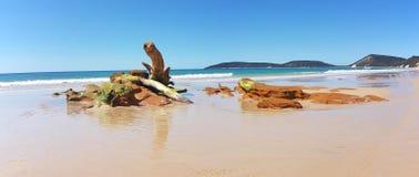 Dwoista wyspa punktu plaża Queensland Australia obrazy royalty free