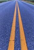 Dwoiste żółte linie dzieli drogę zdjęcie stock
