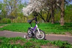 Dwukołowy purpura rower z dodatek strony kołami zdjęcia royalty free