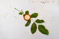 Dwumetaliczny termometr na białej ścianie Prześcieradło orzech włoski fotografia stock