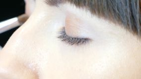 Dye the eyes of the model. Make-up artist dye the eyes of the model with a brush stock footage