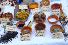 Dye plants Royalty Free Stock Photos