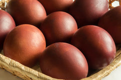 Dyed brown eggs chicken. Painted onion skin. Easter. Closeup royalty free stock photos