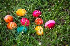 Dyed Easter Eggs in the Grass Royalty Free Stock Photos