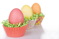 Dyed Easter eggs in a nest of green grass Stock Photo