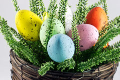 Dyed easter eggs in wicker pot Royalty Free Stock Image