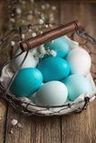 Dyed Easter eggs in a wire basket Royalty Free Stock Image