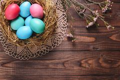 Dyed eggs in bird nest for Easter decoration and flowers. On wooden desk royalty free stock images
