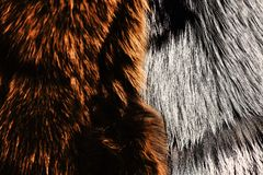 Dyed furry coats in brown and grey color, close up. Natural bear and wolf fur for texture or background. Nature fashion concept. Luxury and elegant fluffy royalty free stock photos